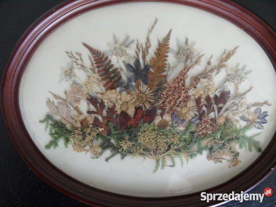 owalny obrazek suszone kwiaty Świnoujście