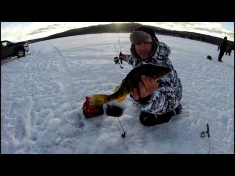Jumbo Perch Ice Fishing Tips: Spring Bobber ... - (More info on: https://1-W-W.COM/fishing/jumbo-perch-ice-fishing-tips-spring-bobber-2/)
