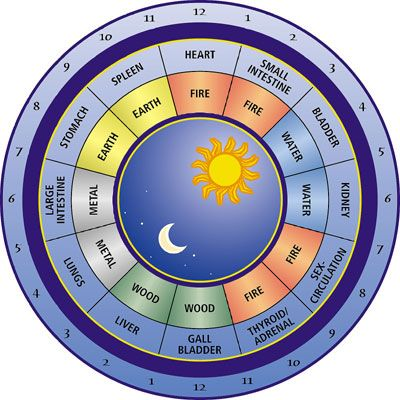 Why do you feel more pain at certain hours? When is the best time to do certain activities? The TCM BODY CLOCK will answer these questions: http://www.spiritualcoach.com/chinese-body-clock/ #tcm #chinesemedicine