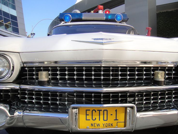 Ecto 1 Ghostbusters 映画 動物