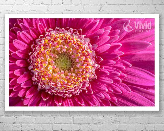 Flower wall art framed gerbera flower photo pink and yellow