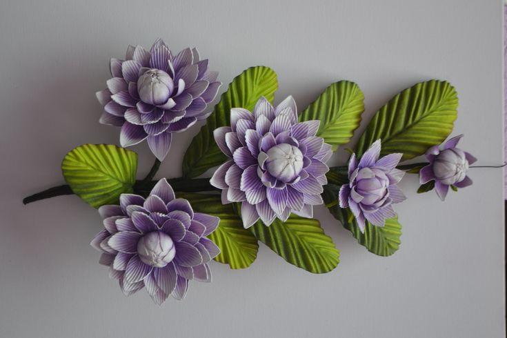 Mega Flores - Ninféia