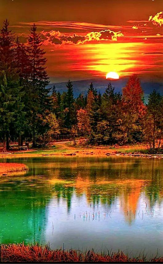 Good evening, dear friends!