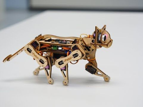 Cool Crowdfunding: Robot Cats, Balloon Drones, and Every Day Calendars