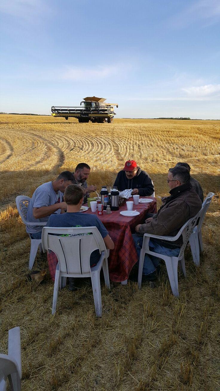 Supper in the field
