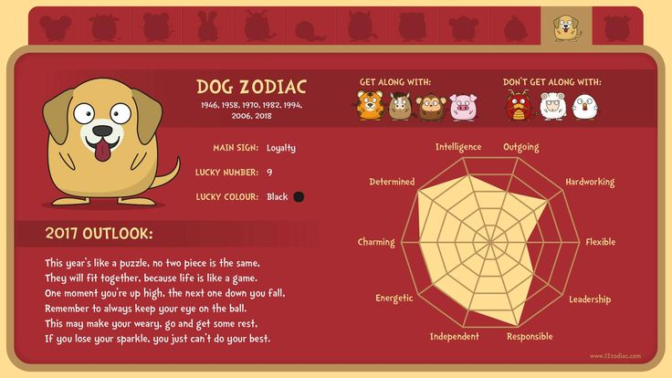 What's in store for people born in the year of the Dog?
