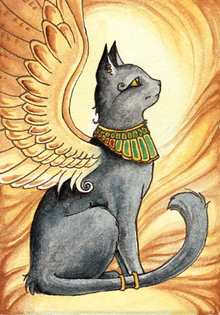 Открытку девушке, картинки египетских кошек