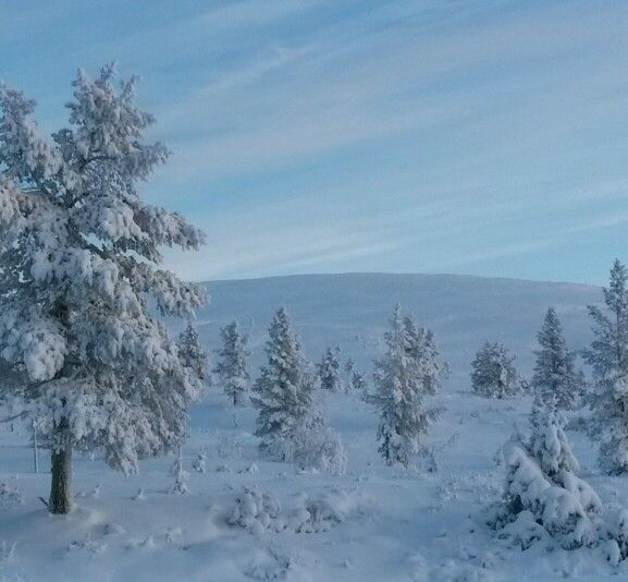 #pallastunturi #lapland #finland in November 2015