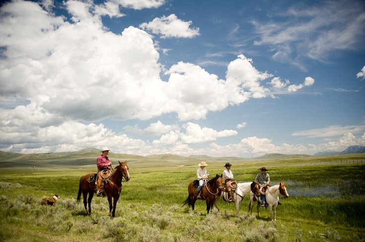 Riding the range at the JBARL in the Centennial Valley.  Photo courtesy of the Montana Office of Tourism. Discover more at www.visitmt.com and www.discoveramerica.com.: Sky Scene, Food Image, Montana Offices, Country Affair, Favorite Places, Montana Cattle, Big Sky, Cattle Ranch, Hors Photography