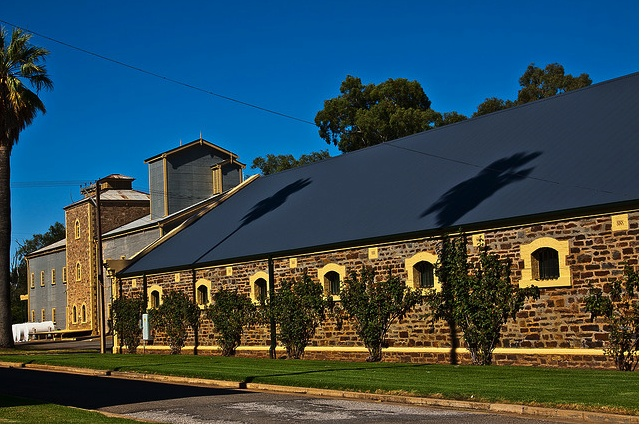 Australia's Seppeltsfield winery