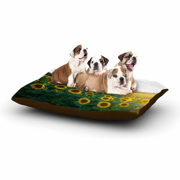 """Chelsea Victoria """"Sunflower Fields"""" Floral Photography Dog Bed"""