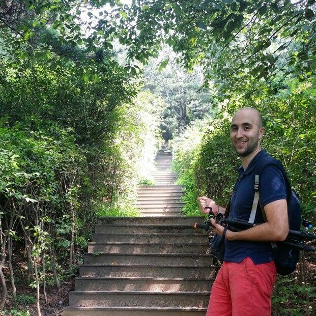 Miles y miles de escaleras delante de nosotros. ¿Podremos subir?   #reto #felizdomingo #paseo #naturaleza #estilodevida