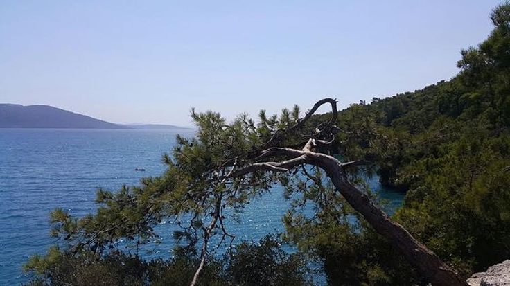 Temmuz 2016 #akyaka #mugla #yesil #mavi #deniz #sea #photooftheday #ege