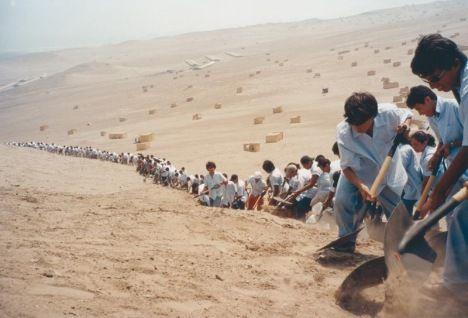 Francis Alÿs in collaboration with Cuauhtémoc Medina and Rafael Ortega When Faith Moves Mountains (Cuando la fe mueve montañas) Lima 2002