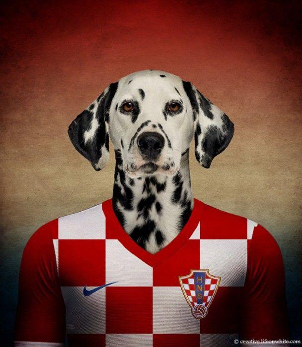 Croatie : Dalmatien