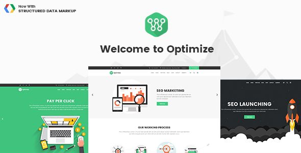 Optimize - SEO, Digital Marketing, Social Media Theme