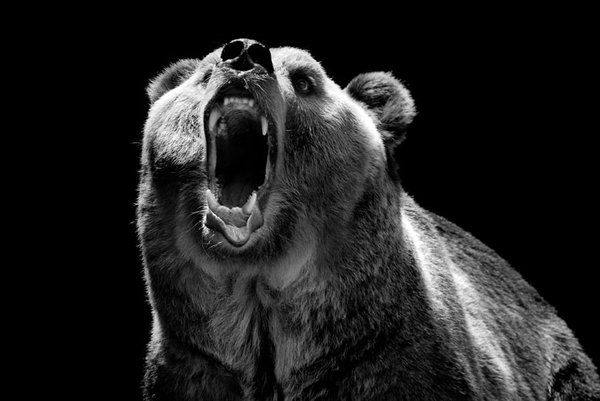So Angry.. by slatkatajna.deviantart.com | Fotografías de ...