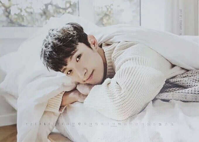 Birth Name: Lee Seok Min Stage Name: DK Birthday: February 18, 1997 Position: Main Vocalist Unit: Vocal Team Height: 178 cm Weight: 66 kg Blood Type: RH-O -He is from Suji-gu, Yongin-si, Gyeonggi-do, South Korea