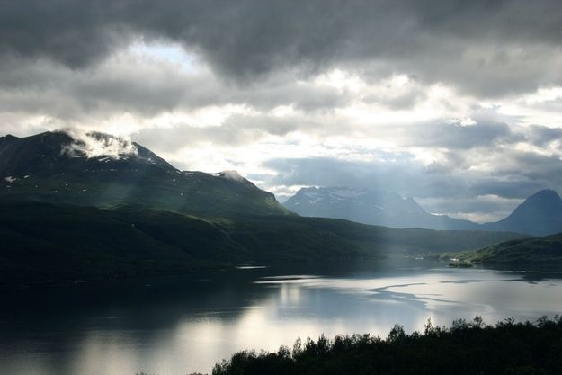"""The Salangen Fjord was known as Selangr in Old Norse, which loosely translates to """"seal fjord."""" Appropriately enough, the Salangen municipality where the fjord resides has a coat of arms that consists of a single seal."""