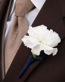 white carnation with blue ribbon for groomsmen and parents; idea: groomsmen- cranberry carnation; groom- white carnation w/ cranberry ribbon