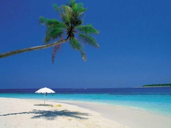 Arambol Beach - Goa