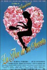 La flor de mi secreto, de Pedro Almodóvar