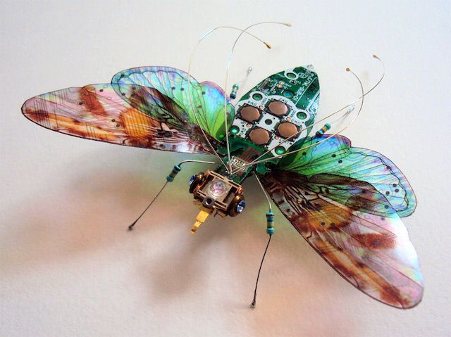 #Components, #Electronics, #Insects, #Upcycled