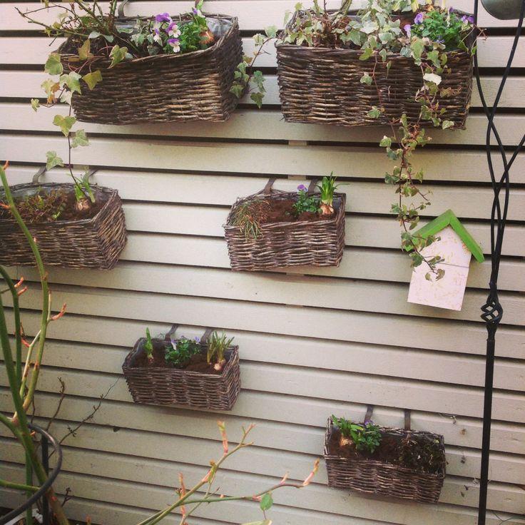 Låt trädgården växa uppåt väggarna! Många små krukor ger odlingsyta.