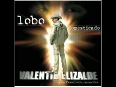 cancion de su album LOBO DOMESTICADO