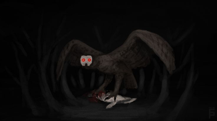 Bighoot - Causing anxiety and insomnia using humming sounds of a specific frequency, these terrifying Mexican birds appear as enormous owls with glowing red eyes. The gaze of these striking eyes has the ability to paralyse surrounding humans, rendering them easy prey for these aerial boogeymen. Due to their similar appearance, they are sometimes affiliated with mothman.