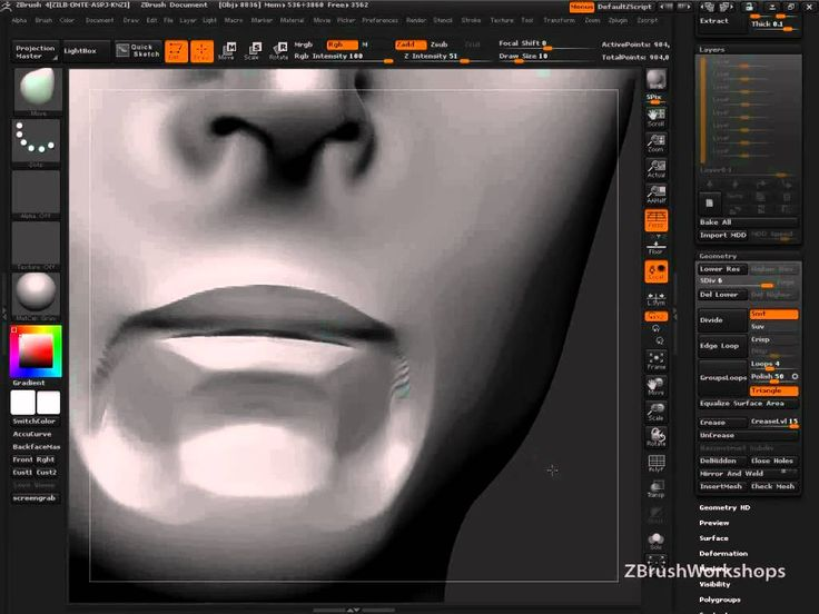 rkingslien - Anatomy of the Face: The Mouth