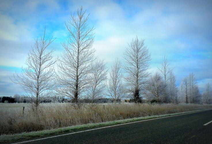 Cool Winter Morning