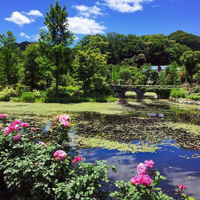 四季折々の自然を楽しむ「軽井沢レイクガーデン」。軽井沢の見所一覧。
