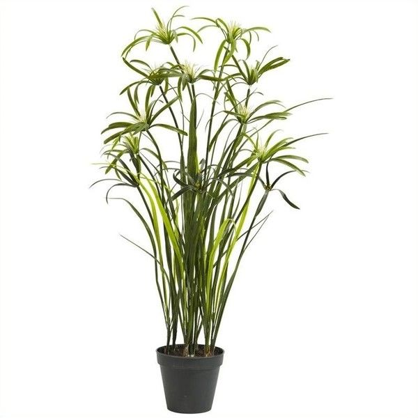 Nearly Natural 3' Papyrus Silk Plant (69 CAD) ❤ liked on Polyvore featuring home, home decor, floral decor, nearly natural silk plants, faux plants, fake flowers, artificial plants and faux florals