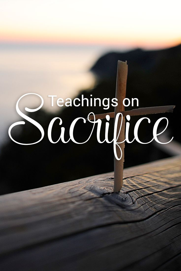 Helping Bible Study Newbies | Bible.org Blogs