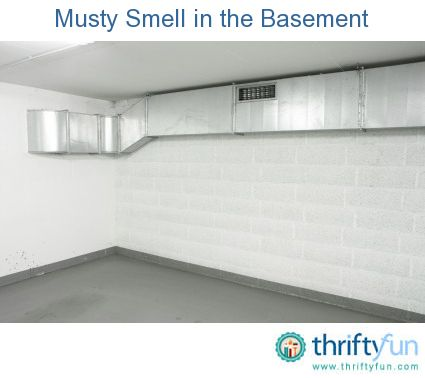 getting rid of a musty smell in the basement basement basements gym