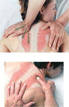 Massage therapy as effective as medication for relieving chronic back pain? El masaje como terapia es tan efectivo para aliviar el dolor de espalda crónico como o más que los medicamentos.