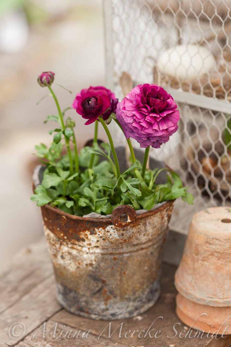 Vackert välkomna | blomsterverkstad