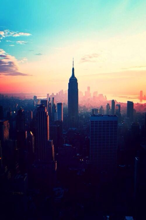 New York City ... the city of dreams. http://www.nyhabitat.com/