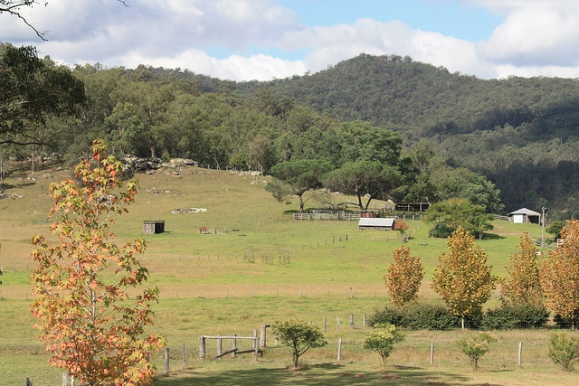 Country scenery - Wollombi, NSW 2011, via Flickr. J AIME  CETTE  VALLEE   ,,,,                  MOI  AU  BORD  DE  MER MEDITERANEE   DIFFERENT,,,,**+