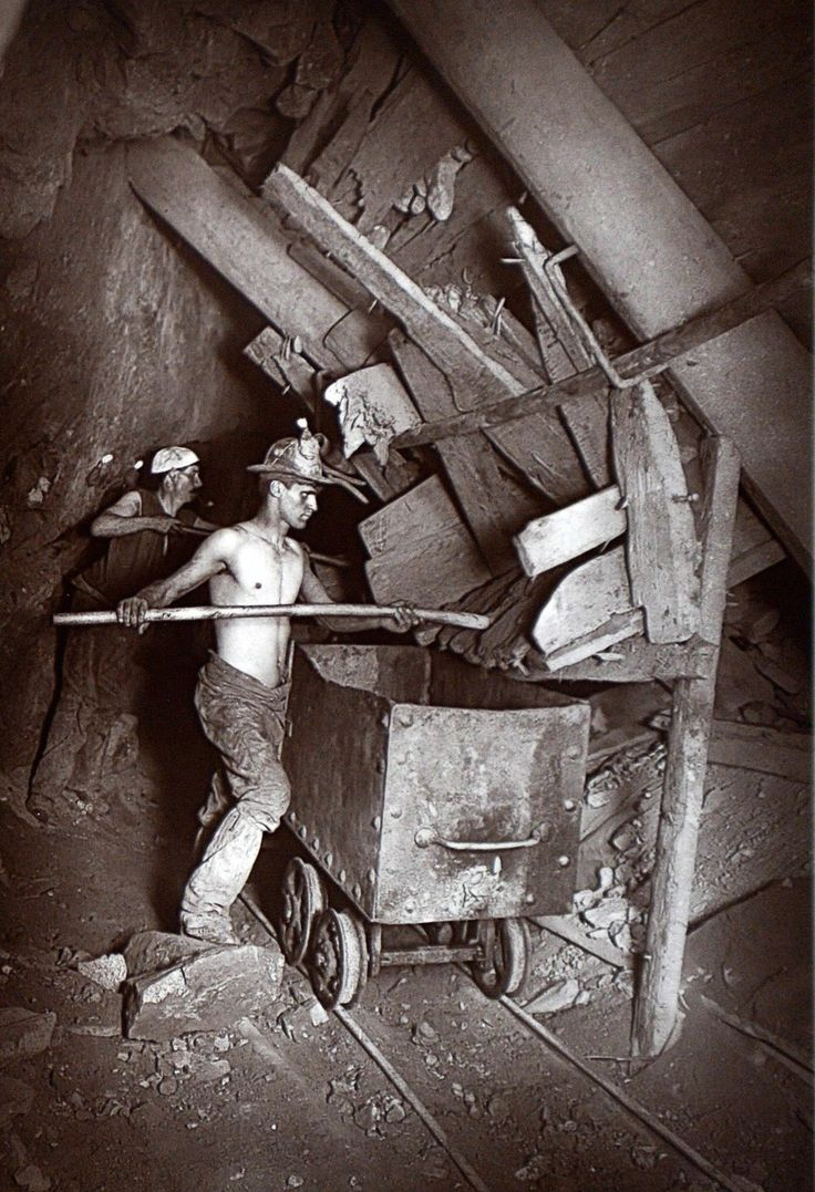 """""""The work, however is so full of interest, and its performance so productive of welcome enlightenment on many critical points, that I have no intention of allowing it to remain where it is."""" 