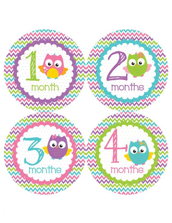 Hey, I found this really awesome Etsy listing at https://www.etsy.com/listing/195498424/pretty-owls-monthly-onesie-stickers-pink