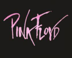 Hoodies Logo Pink Floyd