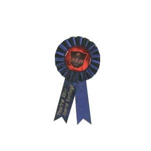 Transformers Birthday Ribbon