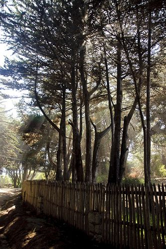 Isla Negra (Chile). Camino hacia la casa de Pablo Neruda.