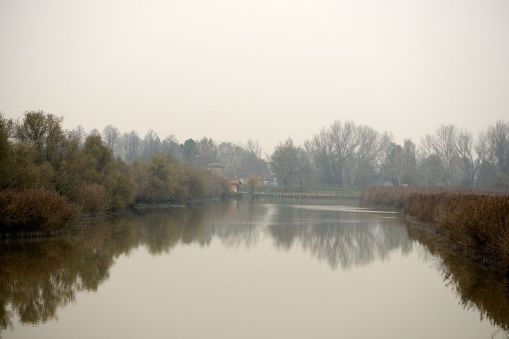 Foschia del canale Campotto by Alessandro Vitale on 500px