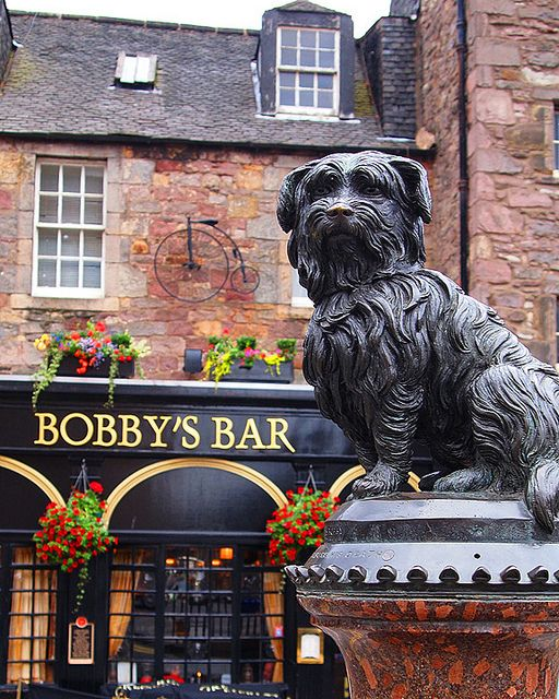 Greyfriars Bobby. Edinburgo, Escocia. UK.- touch dogs nose for good luck. He visited owners grave every day for two years after his death