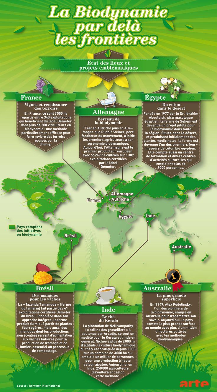 La biodynamie par-delà des frontières | La biodynamie par delà des frontières | Les Moissons du futur | Comprendre le monde | fr - ARTE