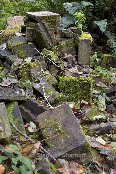 Mossy blocks