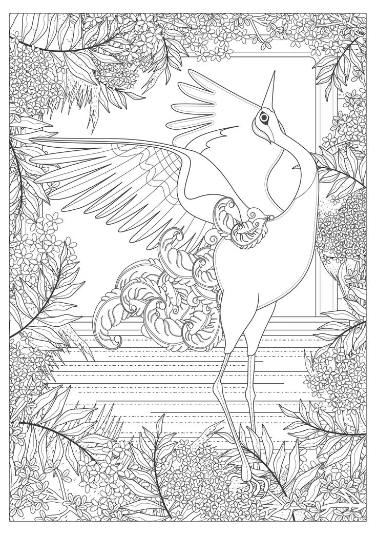 Free Coloring Page Adult Majestic Crane By Kching A
